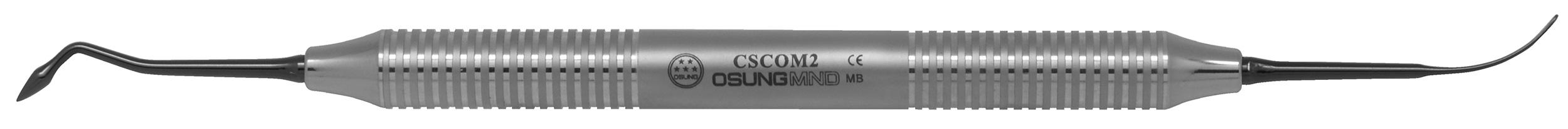 CSCOM2