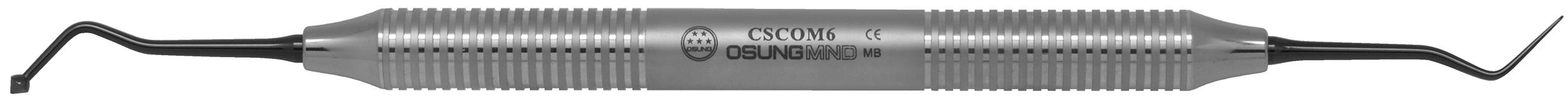 CSCOM6